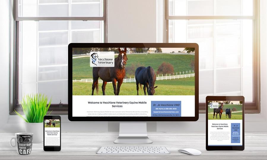 Vecchione Veterinary Website Design | LMS Solutions
