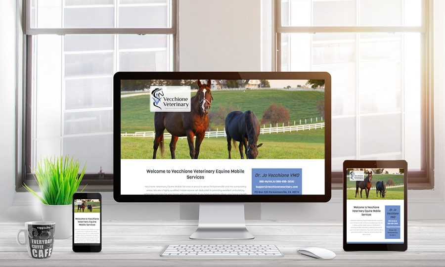 Vecchione Veterinary Website Design | LMS Solutions